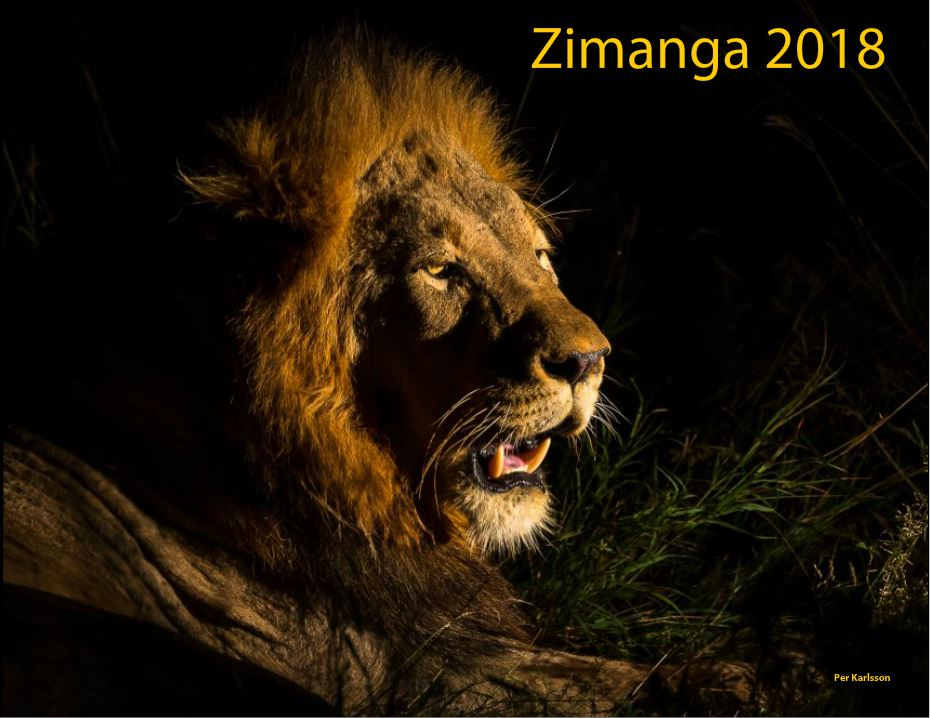 Zimanga front